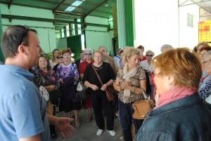 Ayuntamiento de Novelda Uva-300x201 Un grupo de agricultores jubilados visita Novelda para conocer el cultivo de la uva de mesa embolsada