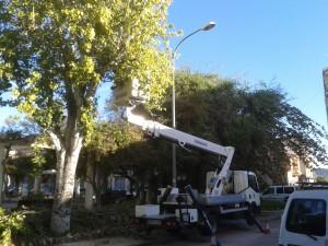 Ayuntamiento de Novelda JARDINES-parque-santa-maria-magdalena-300x225 Comienza a funcionar el nuevo dispositivo municipal de mantenimiento de parques y jardines con actuaciones en la Glorieta y Santa María Magdalena
