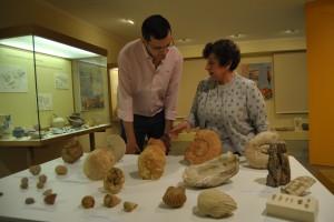 Ayuntamiento de Novelda DSC_2108-300x200 El Museo Arqueológico recupera y cataloga 8.000 piezas y prepara una gran exposición para celebrar su treinta aniversario