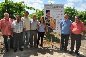 Ayuntamiento de Novelda DSC_0357-300x200 La segunda edición del Concurso de Embolsado de Uva de Mesa se abre a nivel comarcal