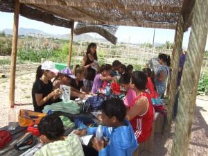Ayuntamiento de Novelda Junio-117-300x225 Media docena de centros escolares participan en el programa de Educación Ambiental de los Huertos Ecológicos