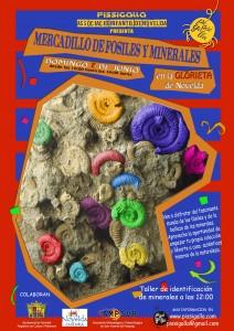 Ayuntamiento de Novelda 2015-06-07-MERCADILLO-DE-FOSILES-212x300 Mercadillo de fósiles y minerales, en la Glorieta.