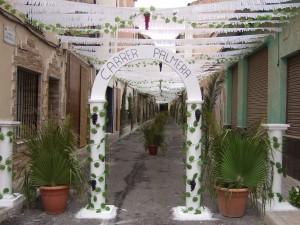 Ayuntamiento de Novelda Carrer-Palmera-300x225 La calle Espoz y Mina, primer premio del Concurso de Decoración de Calles