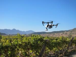 Ayuntamiento de Novelda IMG_3211-300x225 El alcalde no abrirá expediente de averiguación por el uso de drones si no lo determina un informe técnico