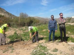 Ayuntamiento de Novelda IMG_4256-300x224 Medio Ambiente y Festival Natura organizan una jornada de reforestación