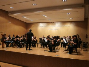 """Ayuntamiento de Novelda IMG_8278-300x225 El Conservatorio Profesional de Música """"Mestre Gomis"""" abre el plazo de inscripción para las pruebas de acceso"""