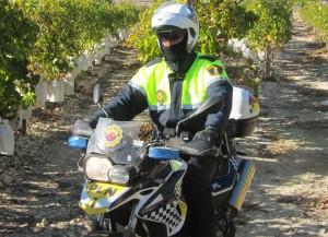 Ayuntamiento de Novelda moto-mini-300x217 El Ayuntamiento completa la renovación del parque móvil de la Policía Local