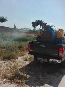 Ayuntamiento de Novelda IMG_20170619_112649-225x300 Las Concejalías de Sanidad y Medio Ambiente ponen en marcha, por tercer año consecutivo, un tratamiento específico para la lucha contra el mosquito