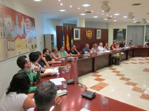Ayuntamiento de Novelda IMG_6650-300x224 El pleno aprueba solicitar a Diputación subvención para  varios proyectos de mejora de infraestructuras