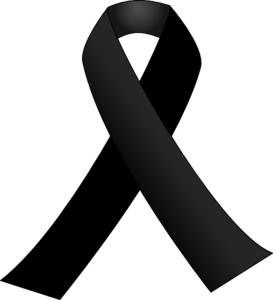 Ayuntamiento de Novelda Lazo-negro El Ayuntamiento de Novelda condena el atentado de Barcelona y convoca una concentración de repulsa