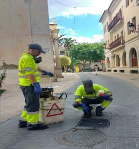 Ayuntamiento de Novelda Campaña-mosquito-281x300 Sanidad y Medio Ambiente ponen en marcha una nueva campaña para la prevención del mosquito tigre