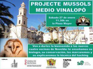 Ayuntamiento de Novelda Cartel-mussols-web-300x225 Novelda recibe cuatro nuevas lechuzas del Projecte Mussols