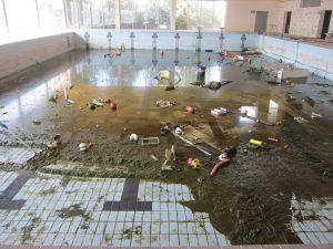 Ayuntamiento de Novelda csad-ayto-300x225 Se inician las tareas de limpieza del Centro Salud Agua Deportivo