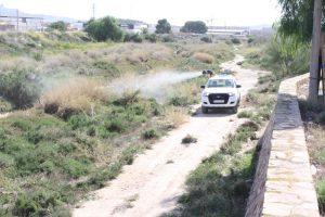 Ayuntamiento de Novelda 1-300x200 El Ayuntamiento amplía la campaña de tratamiento contra el mosquito