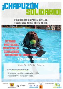 Ayuntamiento de Novelda Def_C_Chapuzon2018-212x300 Las Piscinas Municipales acogerán el próximo domingo una jornada de convivencia canina