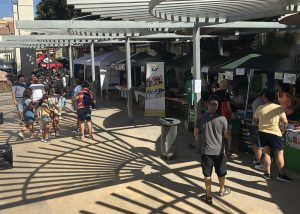 Ayuntamiento de Novelda 1-300x214 La Glorieta acogió la II Feria del Deporte