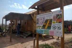 Ayuntamiento de Novelda huertos-2-ayto-300x200 Los Huertos Ecológicos Municipales reciben una subvención de Diputación